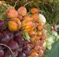 Chef Plus Induction_Atrévete a cocinar con raíces y tubérculos
